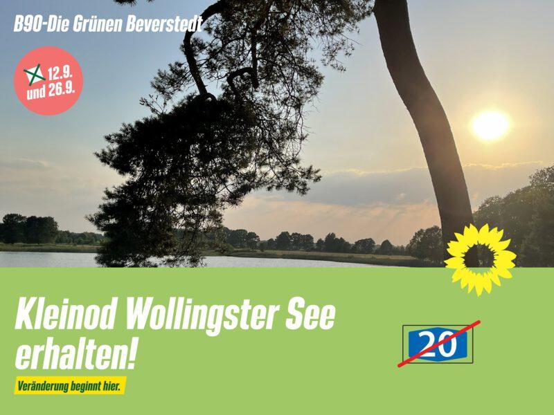 Kleinod Wollingster See erhalten!